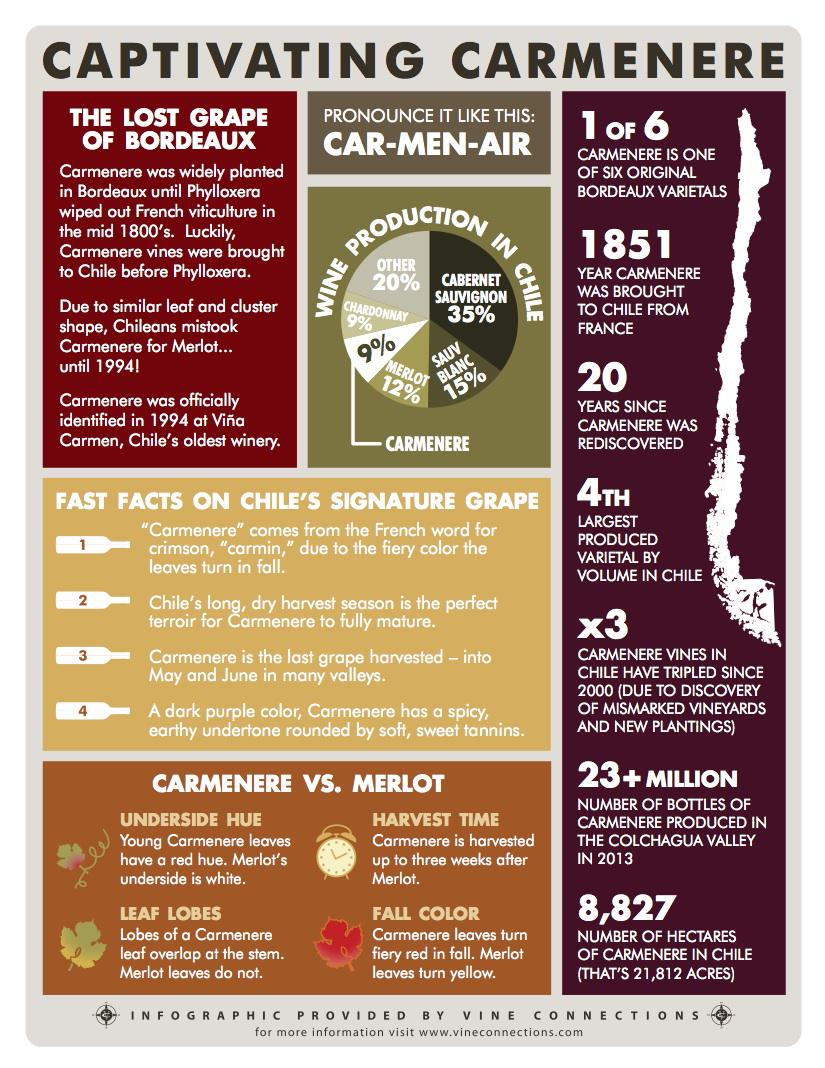Brush up before the chat! Special thanks to @thenewchile for this great info graphic on #Carmenere #CarmenereDay http://t.co/OmdF2kJ3L5