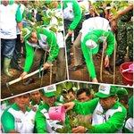 RT @deddy_mizwar_: Turut menanam Pohon Jamblang dlm Aksi Menanam Pohon Indonesia http://t.co/n7uiSNQ9DF