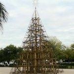 #AlMomento A 8 días, así lucen el pino navideño de la Plaza Juárez #cdvictoria http://t.co/s89KleooP6