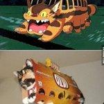 El gato-bus de Totoro en la vida real :3 http://t.co/wfhl1OUMcL