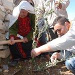 تقوم #APNature بزراعة الأشجار في #فلسطين خاصة في الأراضي المهددة بالمصادرة و القريبة من المستوطنات والجدار العازل. http://t.co/SmzjY6NWQr