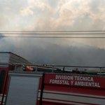 @BomberosGYE continúa combatiendo alarma de incendio forestal en Cerro Azul Vía Perimetral. @forestalesgye http://t.co/WzbAvVGqNB