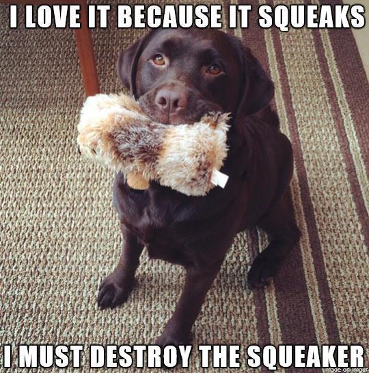 Dog Logic http://t.co/pXsitYkFfe