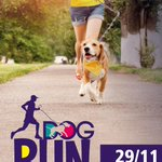 este sábado 29 ven a correr con tu mejor amigo y apoya a la #Teleton #DogRun #UMayorTemuco #Temuco http://t.co/kXSOxeQQ1j