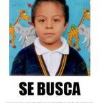 Ayuda a encontrarlo, se extravió este lunes en #Morelia http://t.co/EgvknAfeNM