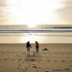 January 2012 #mydayinla #beach #dog #puppy #santamonica #venice #losangeles #california #coast #ocean #waves #sun... http://t.co/IS2cz4PxY1
