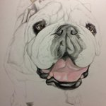 #Drawing a #bulldog today for a client. Im the #ArtisticBulldog and I love #bullies #yorkpa #artist http://t.co/c3iD5HqtEM