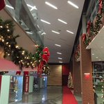 The Hogs are ready for the Holidays! #WPS http://t.co/MdM38VNBUt