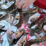 30000 huîtres seront ouvertes vendredi soir à #Bordeaux http://t.co/xYtSD2T85Z http://t.co/QwjsAjH1Rl
