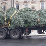 Christmas tree arriving in #Wimborne for the lights switch on this Saturday! #Christmas #Lights http://t.co/zo26hPtX2Q
