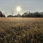 Early morning frost here in Bowling Green today. #kywx #nbccbs40 http://t.co/ehJl1sTpDu