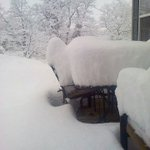 Romney, WV #snow Wow! Pic from Davina Wagoner http://t.co/rjWBgJBWrs