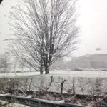 Yep. The #snow is now sticking. #Burlington #wbz #thanksgiving http://t.co/tJqrjXGJaz