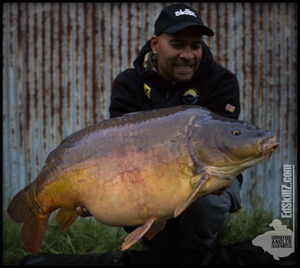 Check out this mirror @EdSkillzCarp banked yesterday from a large untapped European waterway #carpfi