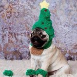 When you realise Christmas is less than a month away... http://t.co/fFNrqJyCiY