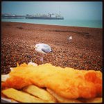 Eating lunch on #Brighton beach was like being in #Hitchcocks The Birds! #seagulls #fishandchips @Love_Brighton http://t.co/znPdvCw6u9