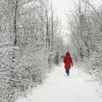 Those winter river valley walks. Photo by kimtannas on Instagram. #ExploreEdmonton http://t.co/pgSJxvFvFX