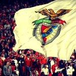 Carrega Benfica ! http://t.co/7tmwAvkcK8