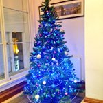 BOOM! The tree is up! What do you think? #nefollowers #christmastree http://t.co/Oet19rt1xt