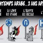 Le bilan du printemps arabe 3 ans après . http://t.co/Qerz4s8MEc