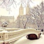 I want to spend Christmas in New York 😍🙌 http://t.co/sn6G2zXTMp
