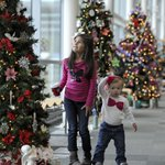 80 #Christmas trees @SVErie Festival of Trees, B.Front Conv. Ctr. in #Erie. Details: http://t.co/we3PMCWqhu #ErieLive http://t.co/F8nKa0DNTn