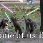 Threats to the Ole Miss trees and shrubs has the Grove squirrels like... http://t.co/0r9D1u6HXz