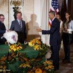 Obama has pardoned the turkey. Photo: @jabinbotsford http://t.co/mpuoftSKzH