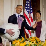 President Obama gives turkeys Mac and Cheese full Thanksgiving pardons : http://t.co/2vYE6URGTP http://t.co/R1cVNJ5wL7