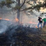 Hinds County firefighters are battling a brush fire near the intersection of Lebanon Pine Grove Road and Ford Road. http://t.co/zQG2QLxf6u