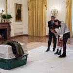 President Obama and his daughters, Malia and Sasha, check out one of the turkeys before todays annual turkey pardon http://t.co/HTfuanTvrg