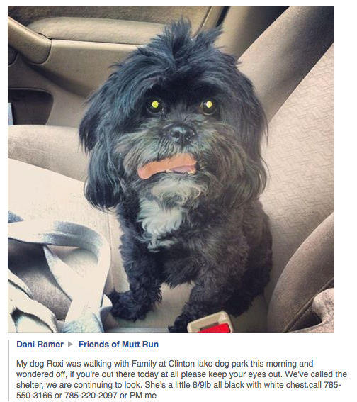 #Lawrence KS area - a much-loved dog is missing and the owner is asking for help spreading the word. #LFK http://t.co/olCxdzURhN