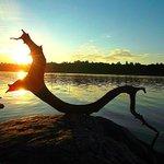 Речной дракон . Вологодская обл. Река Молога. http://t.co/7990BuLN9b