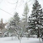 Декабрь в Бурятии будет холодным и малоснежным http://t.co/8GQDtGxkzD #инфпол #новости http://t.co/CdW9Z8cEe8