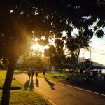 Have a loooovely evening. Golden hour on the esplanade in #Cairns. #FNQ http://t.co/ZaFRGNiuQU