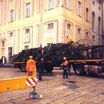 #Genova Albero di #Natale in allestimento a piazza De Ferrari http://t.co/myNTVJMPYj