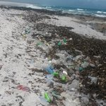 Disguisting rubbish on our beaches. Photos taken 27 Nov2014 past Melkbos Highlighting th importance of beach cleanups http://t.co/4t4hRA5fo3