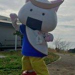 「きょうは、猫の島として有名な石巻市の田代島にいってきましたよ。」 #むすび丸 http://t.co/l3dsqtbXPQ
