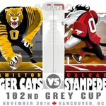 TiCats or Stamps? #GreyCup http://t.co/ZAfkT1iFH8