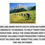 1000s OF SA EMIGRATE 2 OTHER COUNTRIES WHILE ZUMA REGIME KEEP ON KILLING THEIR FOOD PRODUCERS http://t.co/g0t31Xrn9b http://t.co/3wJ32MutD4