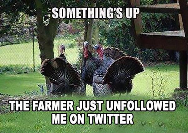 Happy Thanksgiving! Gobble Gobble!!!! http://t.co/m66YV2xUuP