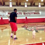 Just a regular day in the Dail Center, @BAnya_Allday walking a dog on the court #BestFriends http://t.co/rtViW24QQY