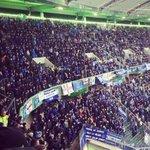 5,000 Everton fans at Wolfsburg today. #EFC http://t.co/zXshvc9ICP