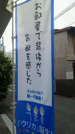 不動産屋ののぼり。静岡、斬新。どういうキャッチコピーだ http://t.co/d5WaMOi1EX