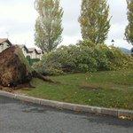 Efectos del #viento en #Ayegui. Ojo que puede afectar y mucho a la conducción,  toma precauciones #seguridadvial http://t.co/84YUtBtx5z