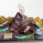 "See some of the U.S.'s natural treasures in ""America's National Parks: A Pop-Up Book."" http://t.co/93zYv5kx9u http://t.co/61MLFgPWt5"
