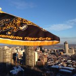 Its Black & Gold Day in #HamOnt! Show your support of @Ticats before Sundays #GreyCup. Use hashtag #BlackandGoldDay http://t.co/75p1OTHMfH