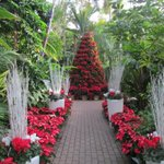 Your weekend Myriad Gardens planner blog-->> http://t.co/IZdmSdpiVU #downtownindecember http://t.co/WMKBQxi46i