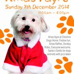 Can anyone donate cakes/Xmas decs/hamper gifts for our Xmas fayre?? RT x http://t.co/mvgNdPnMHj