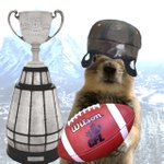 Good luck to @calstampeders in the 102nd Grey Cup, this Sunday! http://t.co/ty7m0unBu7